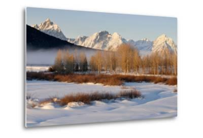 USA, Wyoming, Grand Tetons National Park. Oxbow Bend in Winter-Jaynes Gallery-Metal Print