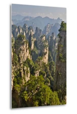 China, Hallelujah Mountains, Wulingyuan, Landscape and Many Peaks-Darrell Gulin-Metal Print