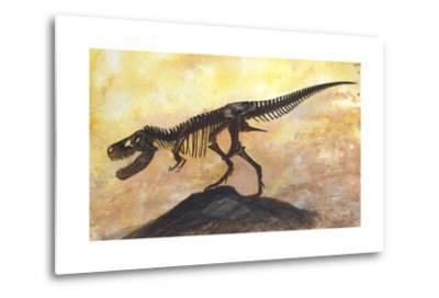 Tyrannosaurus Rex Dinosaur Skeleton-Stocktrek Images-Metal Print