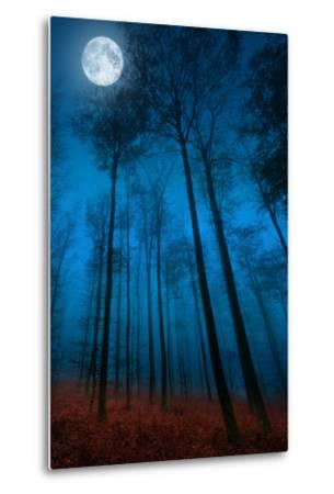Dialogue with the moon-Philippe Sainte-Laudy-Metal Print