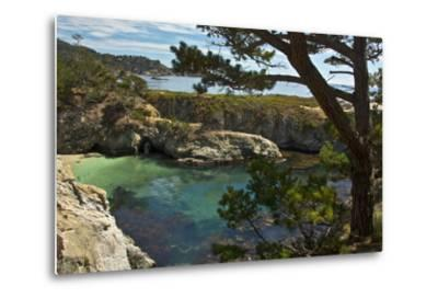 China Cove, Point Lobos State Reserve, Carmel, California, USA-Michel Hersen-Metal Print