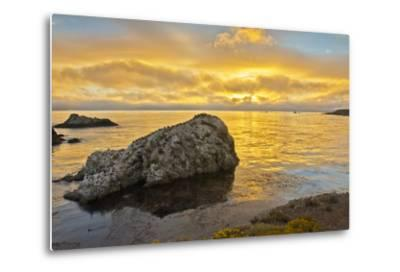 Sunset, Bird Island, Point Lobos State Reserve, California, USA-Michel Hersen-Metal Print