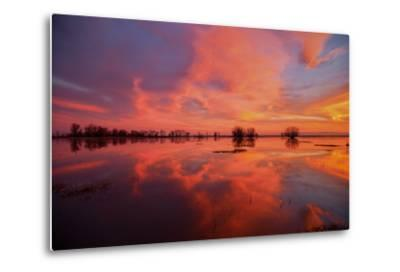 Fiery Marsh Sunset and Reflection--Metal Print