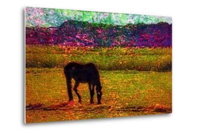 Horse--Metal Print