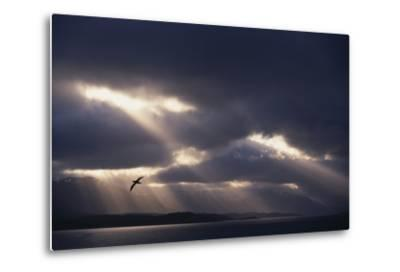 Sunbeams and Clouds over Water-DLILLC-Metal Print