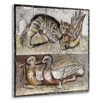 Roman Art : a Wild Cat Catching a Partridge and Two Ducks--Metal Print