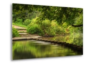 Beautiful Forest Scene of Enchanted Stream Flowing through Lush Green Foliage-Veneratio-Metal Print