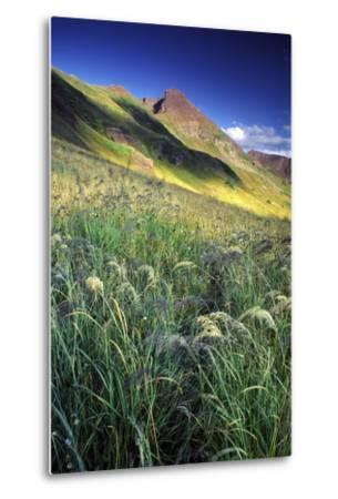 Setting Sun Light and Grass on the Backside of the Maroon Bells Mountains-Keith Ladzinski-Metal Print