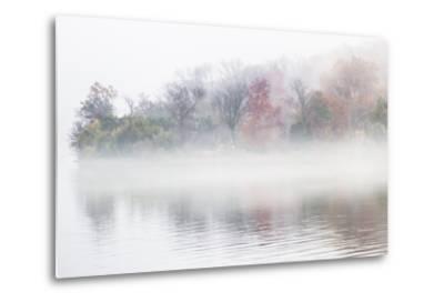 Fall Leaves Peek Through the Morning Fog on the Occoquan River, Near the Potomac River-Kent Kobersteen-Metal Print