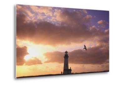 Oregon, United States of America; Yaquina Head Lighthouse at Sunset-Design Pics Inc-Metal Print