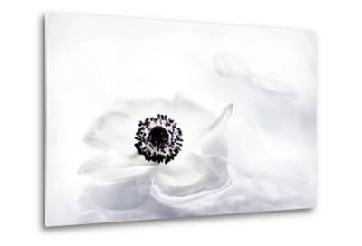 La Fleur Tranquille I-Jeanne Michel-Metal Print