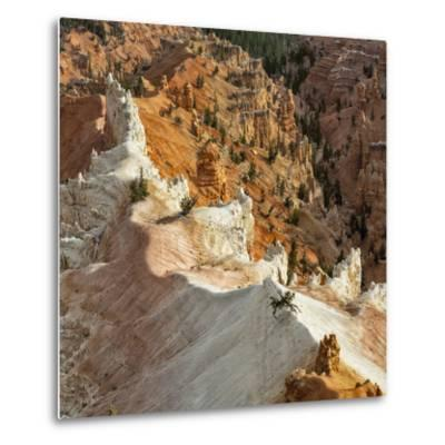 A High Angle View of Hoodoos in Cedar Breaks National Monument, a Natural Amphitheater-Babak Tafreshi-Metal Print