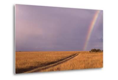 Rainbow on the Savanna-DLILLC-Metal Print