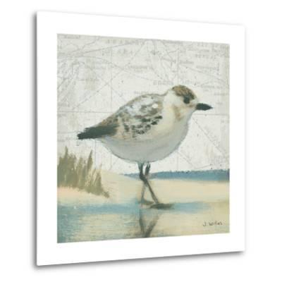 Beach Bird I-James Wiens-Metal Print