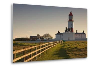 Lighthouse; South Shields, Tyne and Wear, England-Design Pics Inc-Metal Print