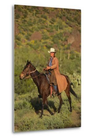 Cowboy Riding a Horse-DLILLC-Metal Print