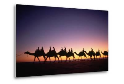 Camels on Beach at Sunset-Paul Souders-Metal Print