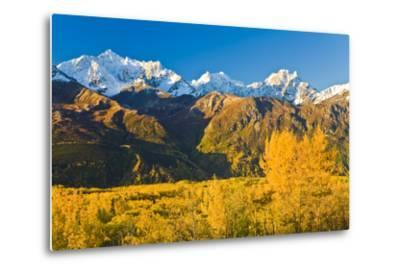 Scenic View of Chugach Mountains Along Matanuska Valley in Southcentral Alaska During Fall-Design Pics Inc-Metal Print