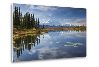 The North Face and Peak of Mt. Mckinley Is Reflected in a Small Tundra Pond in Denali National Park-Design Pics Inc-Metal Print