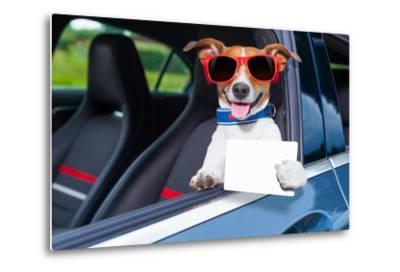 Dog Drivers License-Javier Brosch-Metal Print