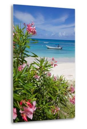Long Bay and Beach, Antigua, Leeward Islands, West Indies, Caribbean, Central America-Frank Fell-Metal Print