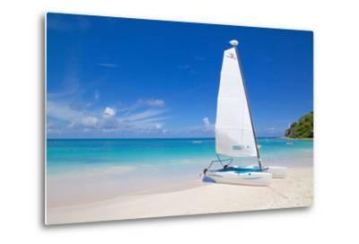 Beach and Hobie Cat, Long Bay, Antigua, Leeward Islands, West Indies, Caribbean, Central America-Frank Fell-Metal Print