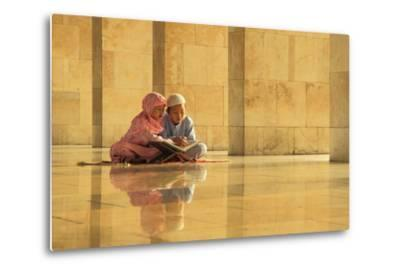 Learning-Hedianto Hs-Metal Print