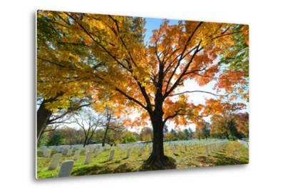Arlington National Cemetery near to Washington Dc, in Autumn-Orhan-Metal Print