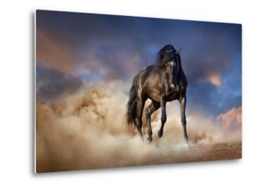 Black Stallion Horse-Callipso88-Metal Print