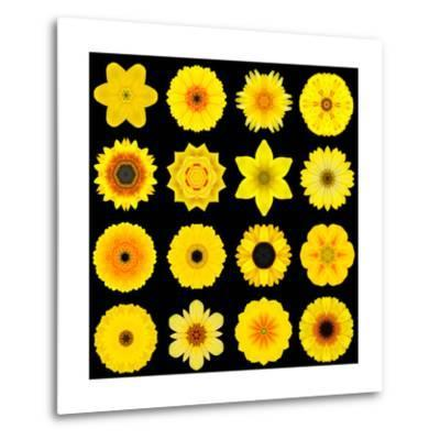 Big Collection of Various Yellow Pattern Flowers-tr3gi-Metal Print