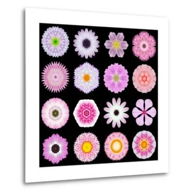 Big Collection of Various Pink Pattern Flowers-tr3gi-Metal Print