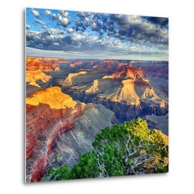Morning Light at Grand Canyon-prochasson-Metal Print