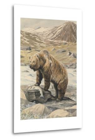 An Alaskan Brown Bear with a Salmon it Caught in a Nearby River-Louis Agassi Fuertes-Metal Print