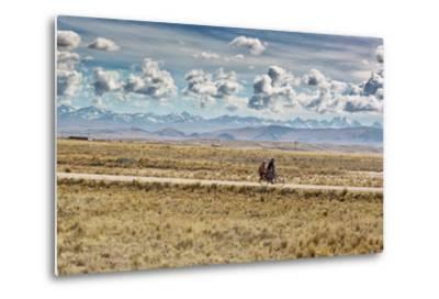 A Man Cycles with a Family Member on the Back of His Bicycle Between La Paz and Tiwanaku-Alex Saberi-Metal Print