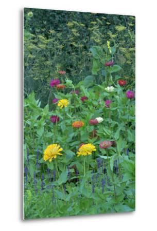 Garden views, Indianapolis gardens, Indiana, USA-Anna Miller-Metal Print