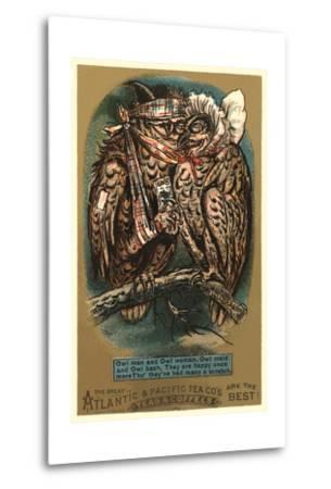 Battered Owl Couple--Metal Print
