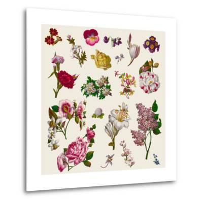 Vintage Victorian Flowers Clip Art-Karimala-Metal Print