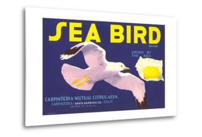 Sea Bird Lemon Label--Metal Print