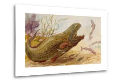 The Extinct Dinichthys Fish Could Grow Up to Twenty-Five Feet Long-Charles R. Knight-Metal Print