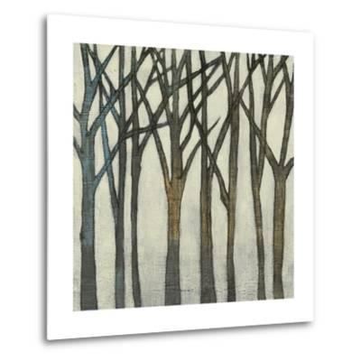 Birch Line II-Jennifer Goldberger-Metal Print