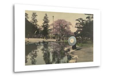 A Woman Observes the Reflection of Cherry Blossoms in a Small Pond-Kiyoshi Sakamoto-Metal Print