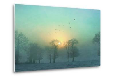 Frozen-Viviane Fedieu Daniel-Metal Print