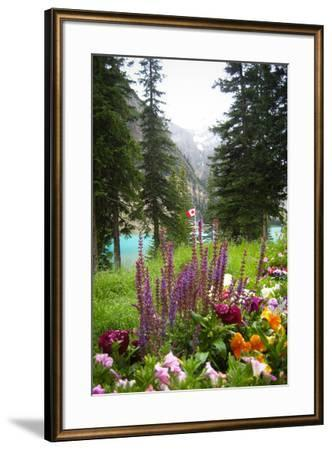 Banff Flowers In National Park Nature Photo Poster--Framed Poster