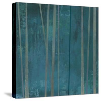 Tenuous III-Anna Polanski-Stretched Canvas Print