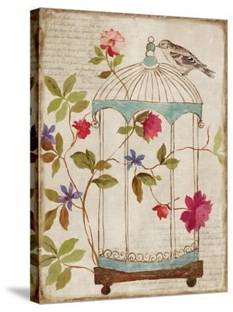 Birds Escape-Anna Polanski-Stretched Canvas Print