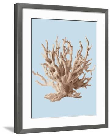 Coral II-Sloane Addison ?-Framed Art Print