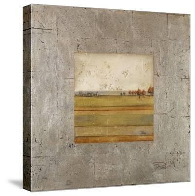 Metalized Landscape I-Patricia Pinto-Stretched Canvas Print