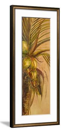 Mis Cocos II-Patricia Pinto-Framed Premium Giclee Print