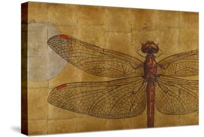 Dragonfly on Gold-Patricia Pinto-Stretched Canvas Print
