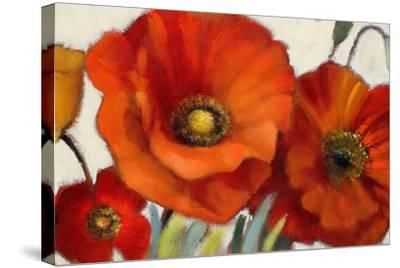 Poppy Splendor I-Lanie Loreth-Stretched Canvas Print